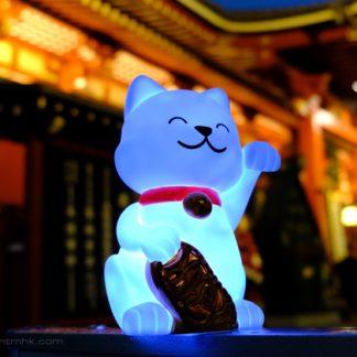 nachtlampje-lucky-cat